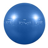 2000lb Professional Core Stability Ball 55cmBlue