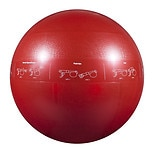 1200lb Professional Burst Resistant Core Stability Ball 65cm 65 cmRed