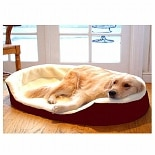 Majestic Pet Products Lounger Pet Bed 28x21 inch Burgundy