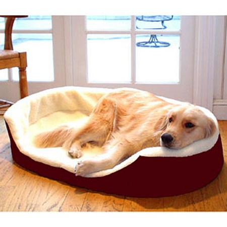 Majestic Pet Products Lounger Pet Bed Large, 36x24 inch Burgundy
