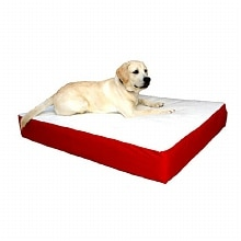 Majestic Pet Products Orthopedic Double Pet Bed 34x48 inch Red