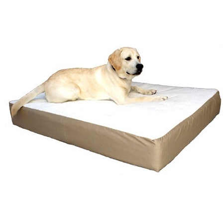 Majestic Pet Products Orthopedic Double Pet Bed Large/Extra Large, 34x48 inch Khaki