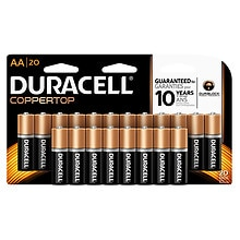 Coppertop Alkaline Batteries AA