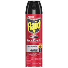 Raid Ant & Roach Killer Aerosol Outdoor Fresh