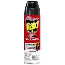 Raid Bed Bug Spray Walgreens