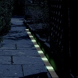 wag-Glow in the Dark Path Markers