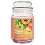 Patriot Candles Jar Candle Papaya Mango Pink
