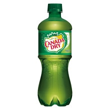 Canada Dry Soda 20 oz Bottle Ginger Ale