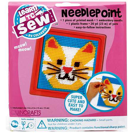 Colorbok Quincrafts Learn to Sew Needlepoint Kit