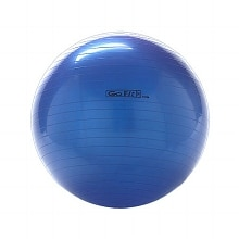 GoFit 75cm Exercise Ball Blue