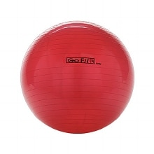 GoFit 55cm Exercise Ball