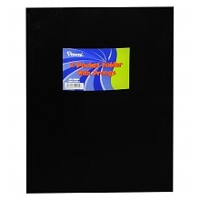 Penway 2 Pocket Folder with Prongs Assorted
