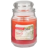 Patriot Candles Jar Candle Apple Orange/Pink/Red