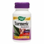 Nature's Way Turmeric Standardized 750mg Vegetarian Capsules