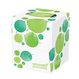Facial Tissues, 2-ply