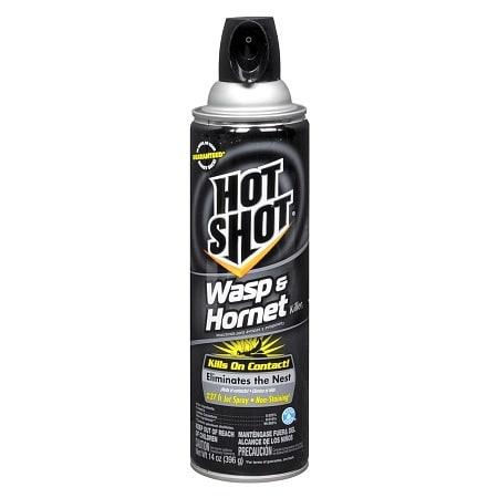 Hot Shot Wasp & Hornet Killer | Walgreens