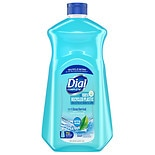 Dial Hand Soap Refill Spring Water