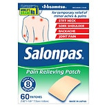 Salonpas Pain Relief Patches