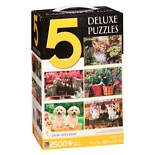 Sure-Lox 5 In 1 Adult Puzzle Assortment