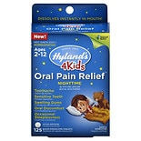 Hyland's Kids Oral Pain Relief Night